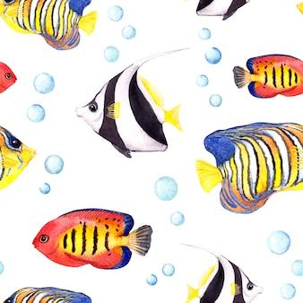 熱帯魚。シームレスなパターンを繰り返します。水彩
