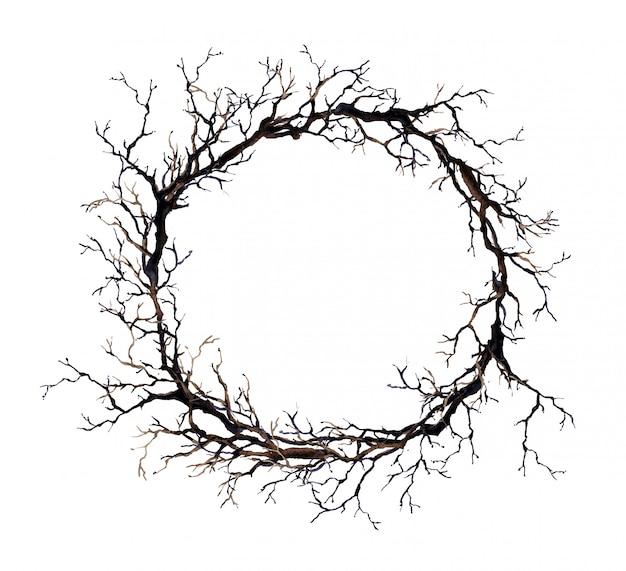 枝と花輪。水彩ボーダー