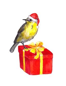 かわいい鳥-赤いサンタ帽子。クリスマスプレゼントボックス