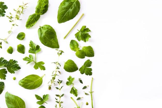 白で隔離される緑の新鮮な芳香性ハーブパターン