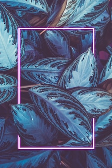 植物の葉とネオンフレームからの背景。自然な背景。概念。コピースペース。垂直フレーム。
