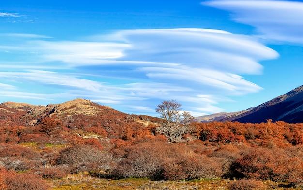 ポインセノットのキャンプ近くの秋の森の上のレンズ雲。ロスグラシアレス国立公園、パタゴニア。アルゼンチン。南アメリカ