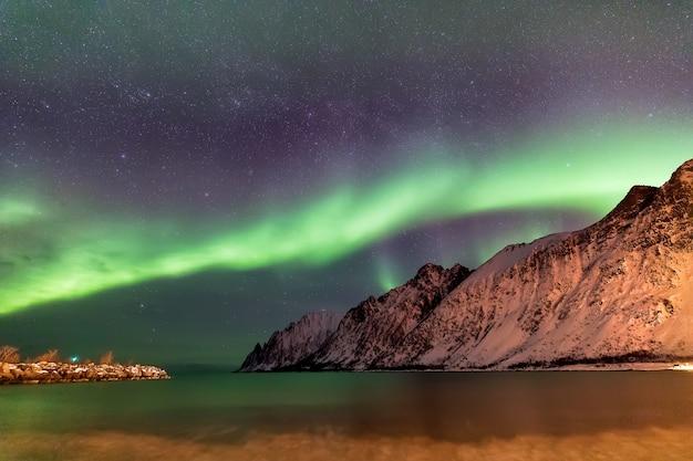 Северное сияние над пляжем эрсфьорд. остров сеня ночью, норвегия. европа