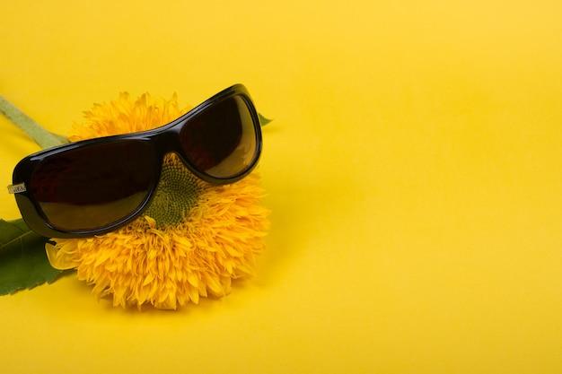サングラスをかけている面白い明るい黄色ひまわり