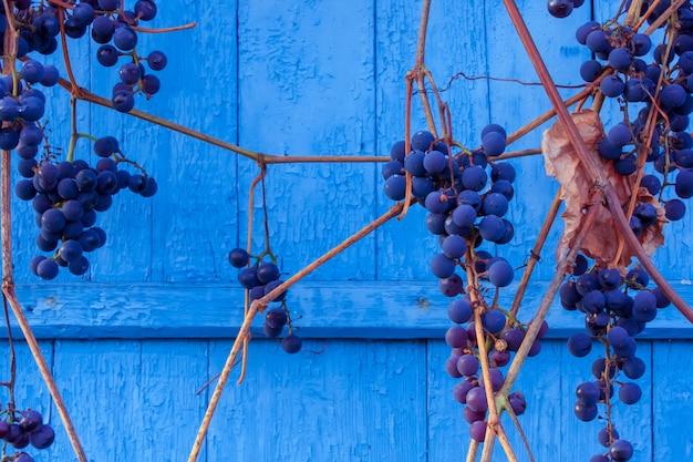 Виноград в дереве на синем фоне деревянные