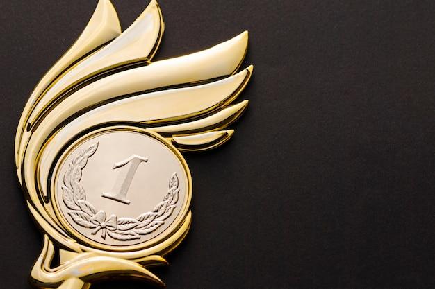 Первое место победителя чемпионата золотой трофей