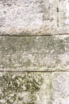 緑の苔で古いコンクリートのテクスチャ。テキスト用のスペース。縦写真