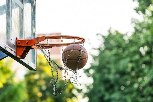 木とバスケットボールフィールドゴールの画像