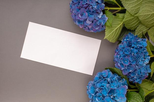 灰色の壁に新鮮な青いアジサイ。テキスト用の空き容量。上面図。コピースペース。創造的な仕事の設計のための空白のグリーティングカード