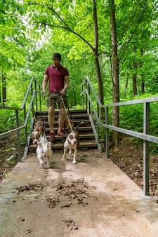 公園で犬を歩く男