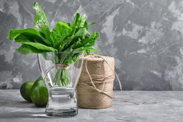 灰色の背景上に水の花瓶に新鮮なスイバの束