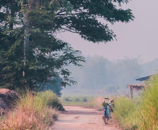 農夫の自転車