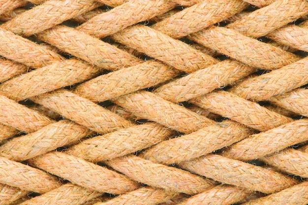 繊維がクローズアップ