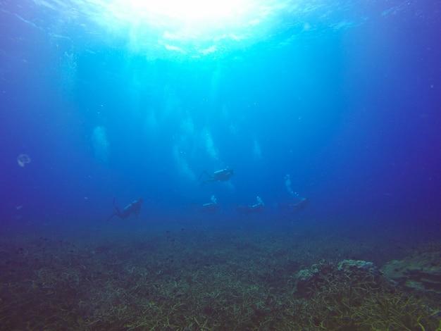 スポーツの海のシルエット旅行、自然