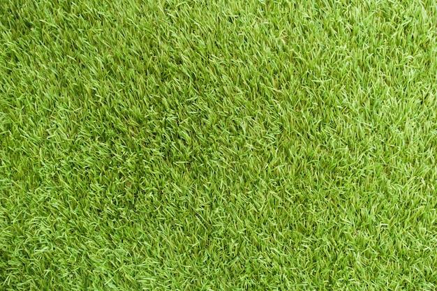 新鮮なカバーの背景美しいスタジアムの草