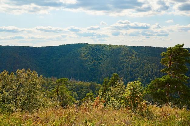 雲と青い空を背景に美しい緑の森。自然公園。