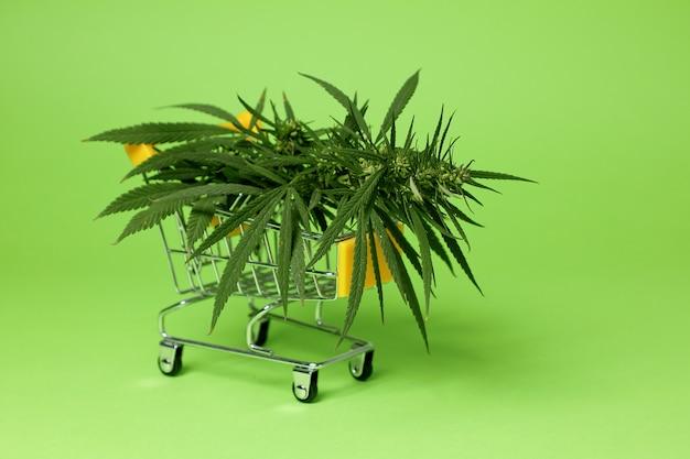 販売のための大麻。