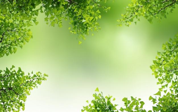 Зеленый естественный фон, зелень фон