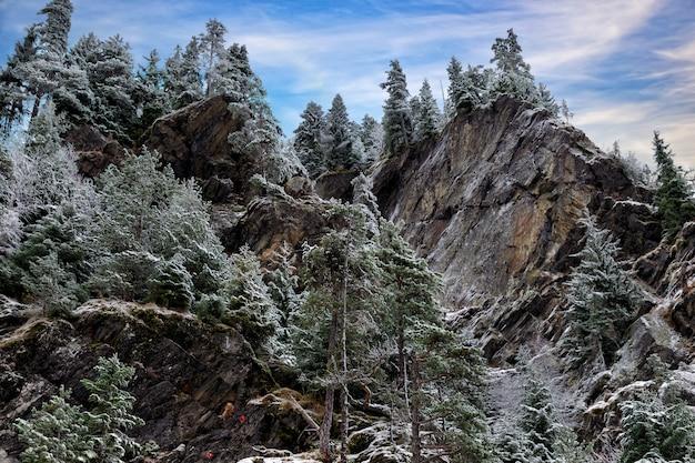 Красивый вид на горы - каменная скала, покрытая сосной и снегом.