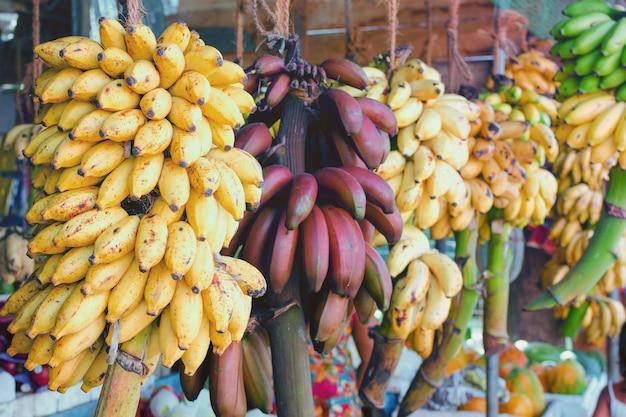 枝に黄色と赤のバナナ。自然でシンプルな有機食品。