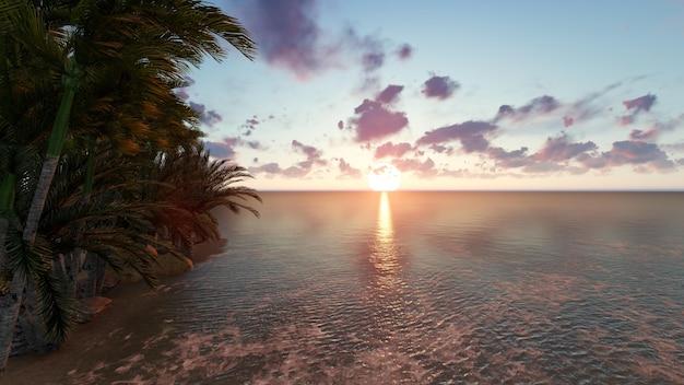 木と日没のビーチ