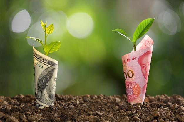 ビジネス、貯蓄、成長、経済のために植物が成長している中国元紙幣と米ドル紙幣の画像