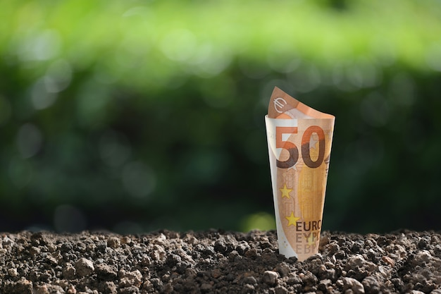 ビジネス、貯蓄、成長、経済概念のための土の上にユーロ紙幣の画像