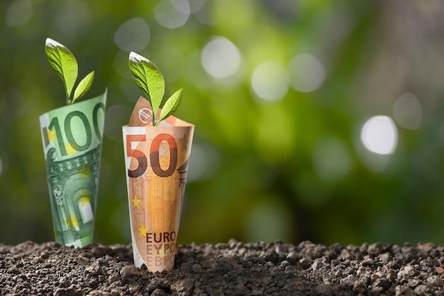 ビジネス、貯蓄、成長、経済の概念の上に成長している植物とユーロお金紙幣のイメージ