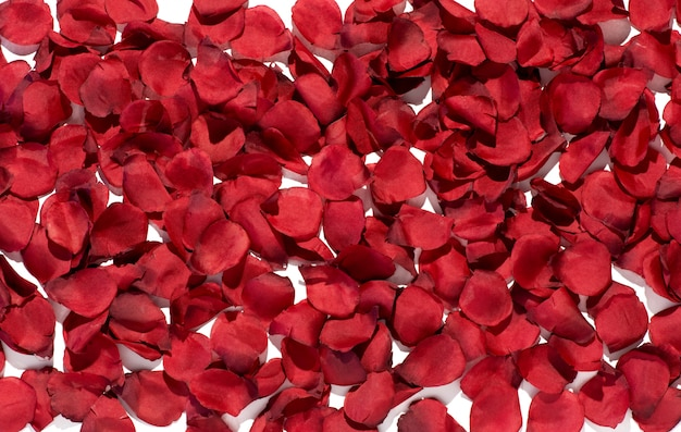 豊かな赤いバラの花びらの背景テクスチャ