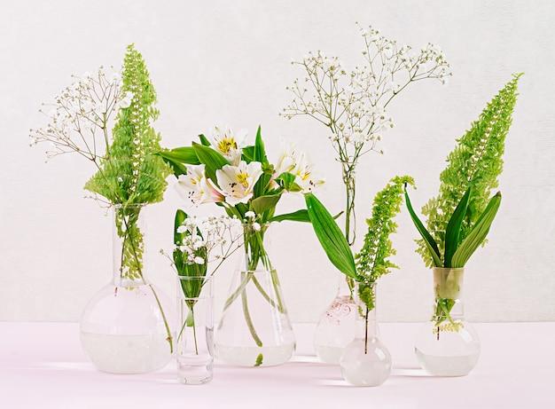 Цветы и растения в колбе. красивые цветы в вазе.