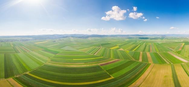ルーマニアの緑の野原の風景