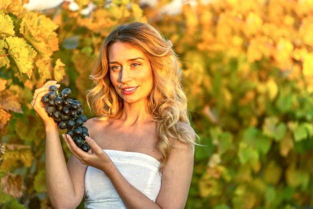 ブドウ畑からブドウを収集する女性
