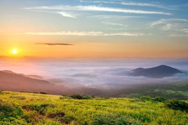 緑の芝生の牧歌的な風景は、遠くの峰と厚い白い曇りの霧でいっぱいの広い谷で朝の山を覆っていました。