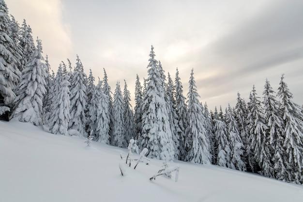 美しい冬の山の風景。