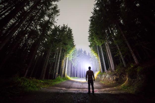 Вид сзади человека с головным фонариком, стоящего на лесной грунтовой дороге среди высоких ярко освещенных елей