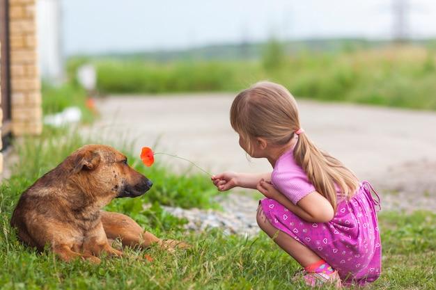 幸せな少女は犬に赤い花を示しています