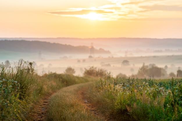 日の出の柔らかい光の砂利田舎道