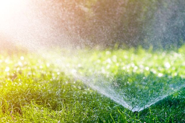 夏の暑い日に庭や裏庭の芝生の新鮮な草の上に水を噴霧する芝生の水スプリンクラー。自動散水装置、芝生のメンテナンス、ガーデニング、ツールのコンセプト。