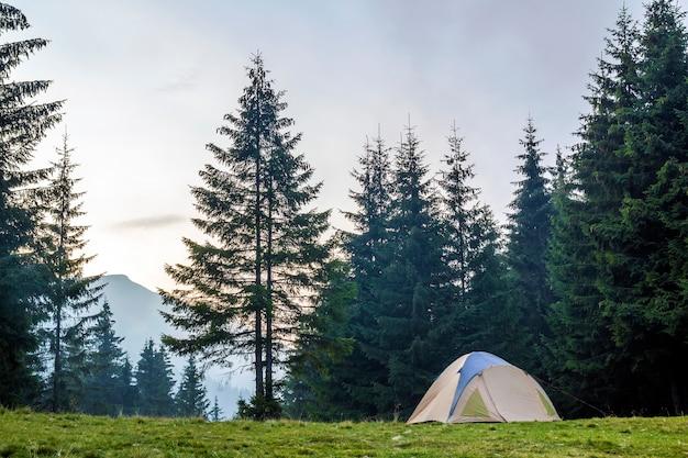 Белая и голубая туристическая палатка на зеленом лугу между вечнозеленым лесом елей с красивой горой в расстоянии. туризм, активный отдых и здоровый образ жизни.