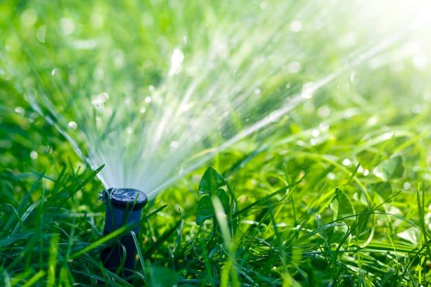 Вода спринклера лужайки распыляя над травой зеленого цвета лужайки свежей в саде или задворк на горячий летний день. концепция автоматического полива оборудования, ухода за газоном, садоводства и инструментов.