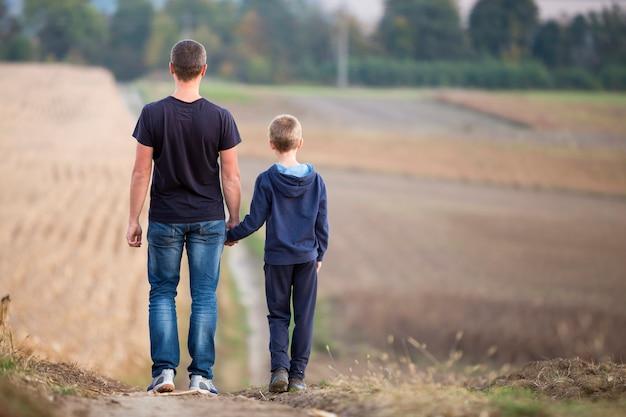 若い父と息子がぼやけて霧の緑の木々と青い空を背景に芝生のフィールドで手をつないで一緒に歩いての背面図。アクティブなライフスタイル、家族関係、週末の活動の概念。