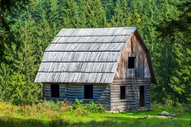山の森の小さな木造住宅