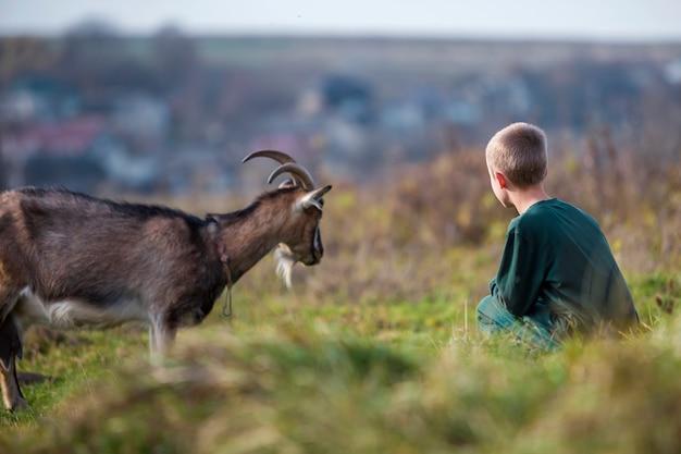 明るい日当たりの良い夏に屋外で角のあるひげを生やしたヤギと遊ぶ若い金髪かわいいハンサムな笑みを浮かべて子少年。