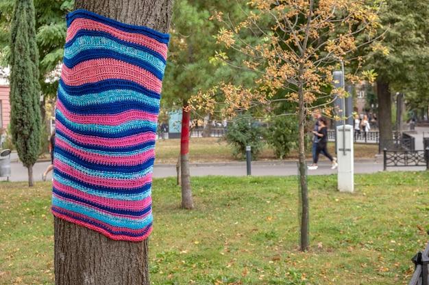 秋の公園でカラフルなニットスカーフを身に着けている木。自然と環境の概念に注意してください。