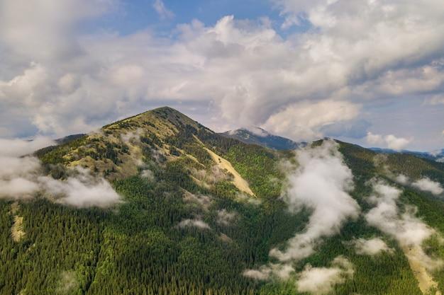 緑のカルパティア山脈の空撮は、常緑のトウヒパインフォレストン夏の晴れた日に覆われています。