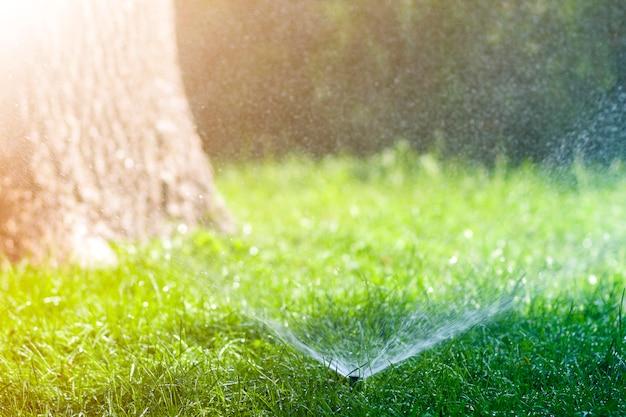 Разбрызгиватель воды для газона