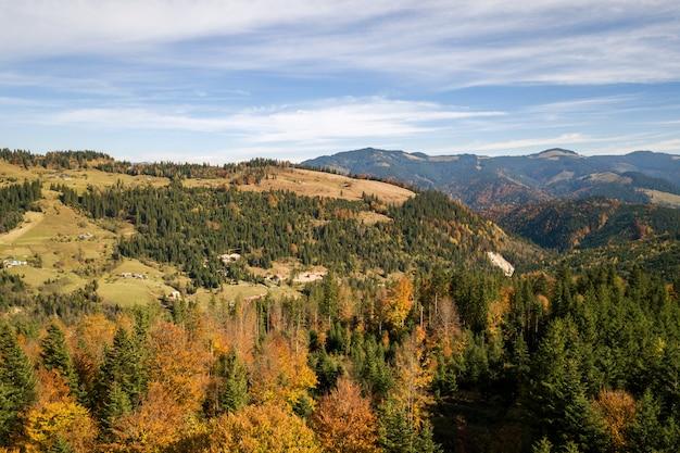 常緑の松の木と秋の山の風景と魔法の山々と黄色の秋の森の空撮。