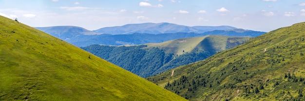 夏の山の緑の丘のパノラマ