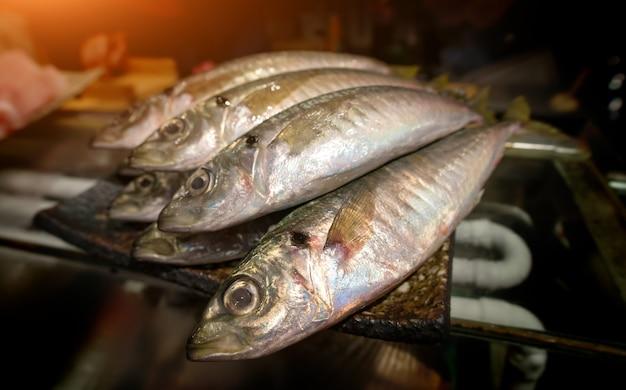 Японские скумбрии рыба или аджи в японии.