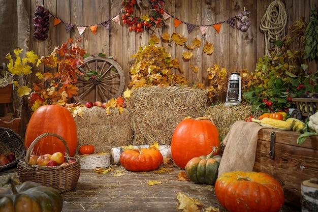 Украшение осеннего сена тыквы и осенние подарки